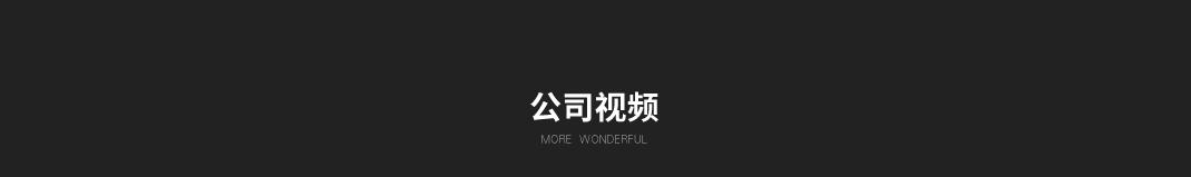 长春国一保镖公司宣传视频
